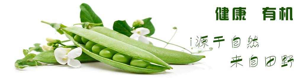 厨兄弟生鲜蔬果一站式食材配送平台|有机蔬菜-健康有机•源于自然,来自田野