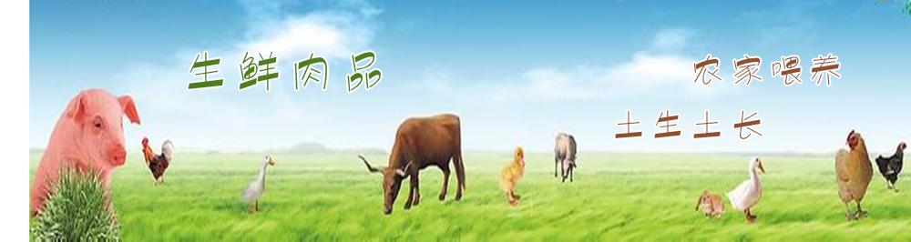 厨兄弟生鲜蔬果一站式食材配送平台|生鲜肉品-农家喂养•土生土长