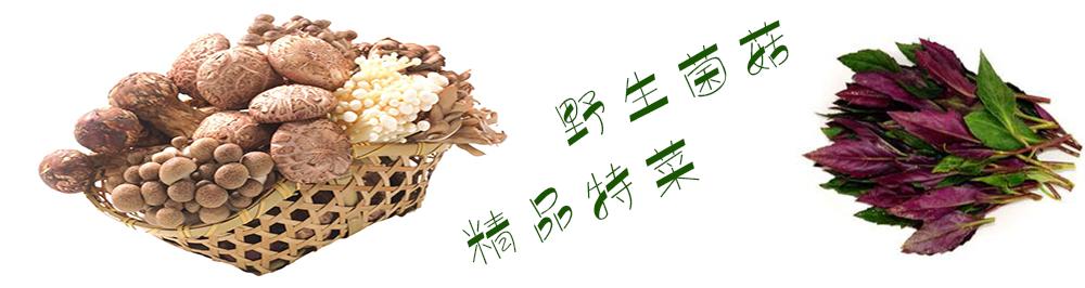 厨兄弟生鲜蔬果一站式食材配送平台|菌菇藻蕨-野生菌菇•精品特菜